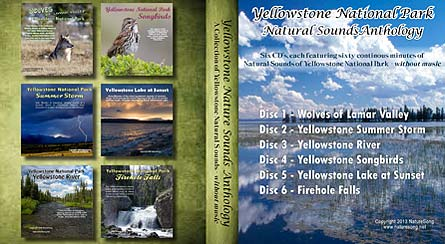 Yellowstone Anthology 6 CD Collection